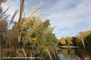 Der Fredenbaumpark im Herbst