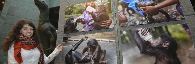 """Die Ausstellung """"Kinshasa vivant"""" im Museum für Naturkunde ist an diesem Wochenende zum letzten Mal zu sehen"""