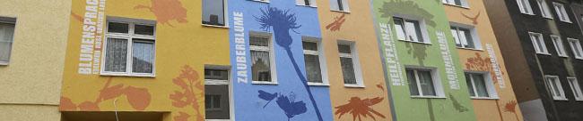 Bilderflut an Hausfassaden: Begehbares Lexikon in der Nordstadt um sieben Objekte erweitert