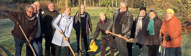 Baum des Jahres 2016 im Fredenbaumpark gepflanzt Die Winter-Linde kann bis bis zu 1000 Jahre alt werden