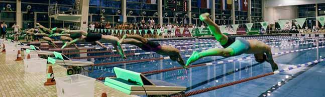Zeitgleich im Kopf-an-Kopf-Rennen: Die Swim Race Days machen das Schwimmen in Dortmund publikumstauglich