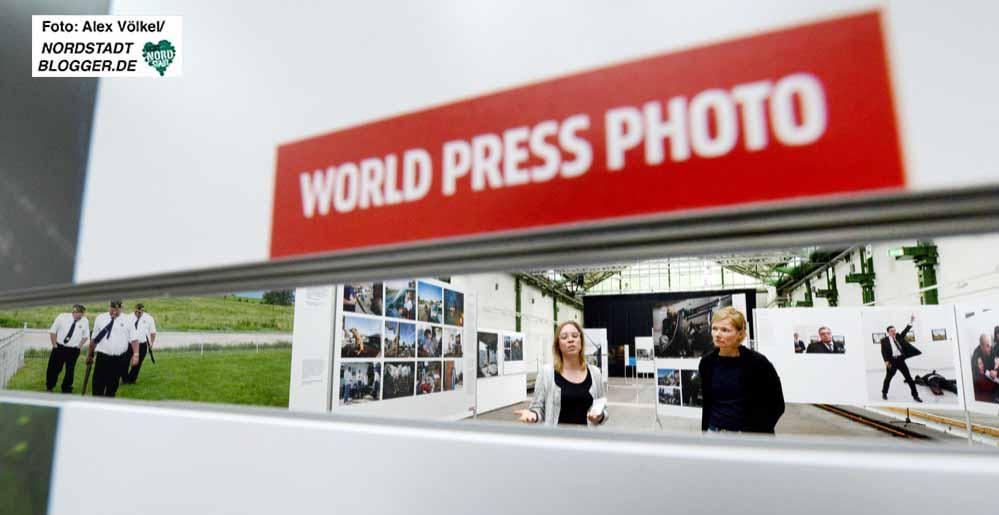 Auf 62 Tafeln sind 152 Fotos aus acht Kategorien zu sehen. Foto: Alex Völkel