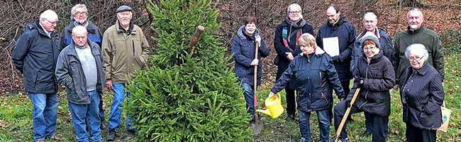 Gemeine Fichte ist Baum des Jahres 2017 – Freundeskreis pflanzte ein stattliches Exemplar im Fredenbaumpark