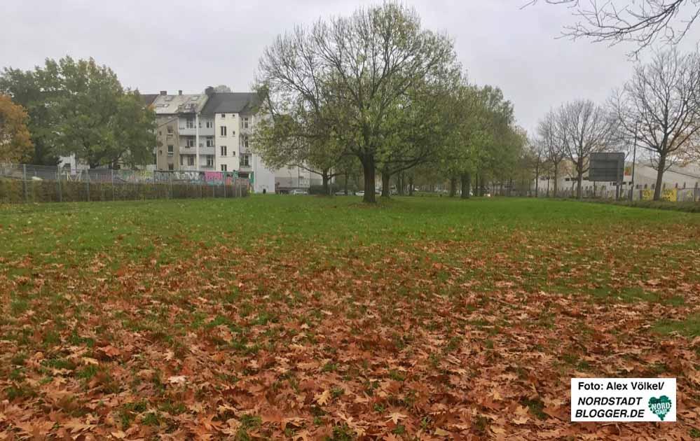 Am Sunderweg soll die Lessing-Grundschule neu gebaut werden. Foto: Alex Völkel