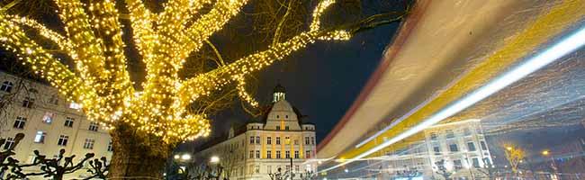 Mehr Licht für den Borsigplatz: Über 13 000 LED-Lichter an den insgesamt 30 Platanen sorgen für hellen Glanz